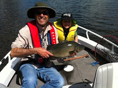 how to catch murray cod on spinnerbaits